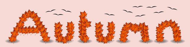 Word de Herfst met vliegende vogels en esdoornbladeren Stock Afbeelding