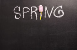 Word de lente met de hand geschreven op bord Stock Afbeelding