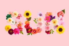 Word de zon wordt gemaakt van omfloerst document bloemen die royalty-vrije stock afbeeldingen