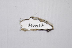 The word devoted appearing behind torn paper. The word devoted behind torn paper Stock Photography