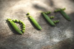 Word DIET written with peas royalty free stock photos