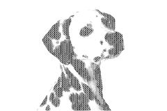 Word dog mixed to be figure of dog, with typography style, isola Stock Image