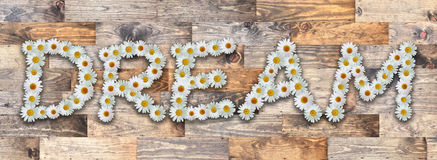 Word Dream Wood Background. Word made from real daisy flowers on wood background Royalty Free Stock Image