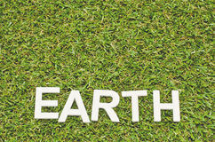 Word earth made froom wood on artificial grass Royalty Free Stock Image