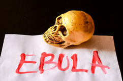 Word Ebola Text Royalty Free Stock Image