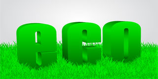 Word eco in a grass Royalty Free Stock Image