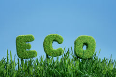 Word of eco on grass Stock Photos