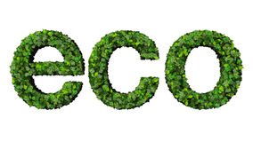 Word eco made from green leaves isolated on white background. Word made from green leaves isolated on white background Stock Photography