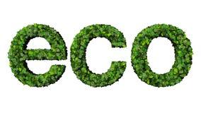 Word eco van groene die bladeren wordt op witte achtergrond worden geïsoleerd gemaakt die Stock Fotografie