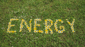 Word ENERGY written with blossoms Royalty Free Stock Photo