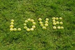 Word förälskelse av det gröna äpplet på trädgårds- lawn royaltyfri bild