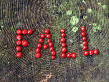 A word fall. Written with cranberries Royalty Free Stock Photo
