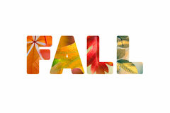 Word Fall with different colorful nature leaves photos Stock Image