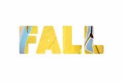 Word Fall with golden nature leaves photos inside Stock Photo