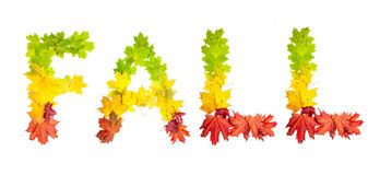 Word FALL made of autumn maple leaves in bright colors Stock Photos