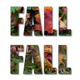 Word Fall with Maple Leaves. Word FALL composed of photos of fallen autumnal maple leaves Royalty Free Stock Photography