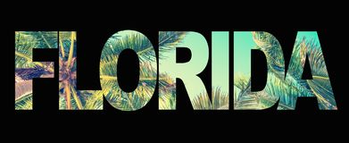 Word Florida with palm trees on black royalty free stock images