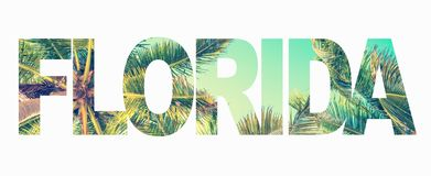 Word Florida with palm trees on white royalty free stock image