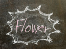 The word flower in bubble sign Royalty Free Stock Photos