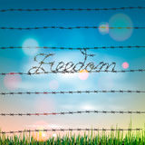 Word freedom written by a barbed wire Royalty Free Stock Images