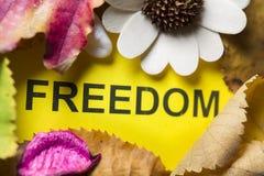 Word freedom Royalty Free Stock Photo