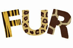 Word Fur. Letters made of fur isolated on white background royalty free illustration
