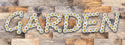 Word Garden Wood Background. Word made from real daisy flowers on wood background Royalty Free Stock Photography