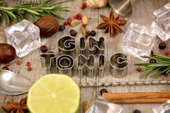 Gin and Tonic conception. stock image