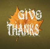Word Give Thanks written on brown leaf. Close royalty free stock images