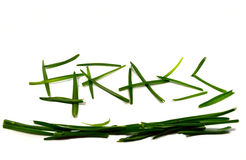 Word grass written with green grass. On a white background Royalty Free Stock Photography