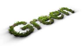 Word green typed by flowers and grass Royalty Free Stock Image