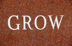 Word groeit op Rode Granietachtergrond Stock Afbeeldingen