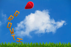 The word growth on grass tied up to red balloon with word targets on blue sky background. The word growth on grass tied up to red balloon with word targets on Royalty Free Stock Images
