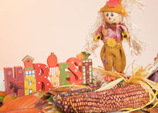 The word Harvest, Corn, Scarecrow, Fall Leaves. The word Harvest, Corn and Scarecrow on Colorful Fall Leaves Background royalty free stock image
