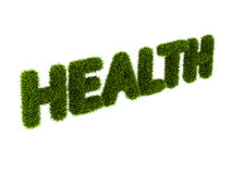 Word health covered grass Royalty Free Stock Image