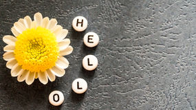 The word `Hello` laid out of round blocks and chamomile. Photo Royalty Free Stock Photos
