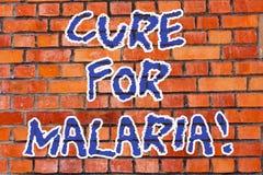 Word het schrijven tekstbehandeling voor Malaria Bedrijfsconcept voor gelijkaardige Primaquine-drug die tegen malaria voor preven royalty-vrije stock afbeeldingen