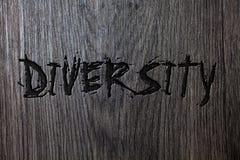Word het schrijven tekstdiversiteit Bedrijfsconcept voor wordt Samengesteld uit verschillende Multi-etnische Houten houten bac va royalty-vrije stock foto's