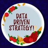 Word het schrijven tekstgegevens Gedreven Strategie Bedrijfsdieconcept voor besluiten op van de gegevensanalyse en interpretatie  royalty-vrije illustratie