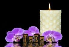 Word hoop in letterzetseltype en orchidee Stock Afbeeldingen