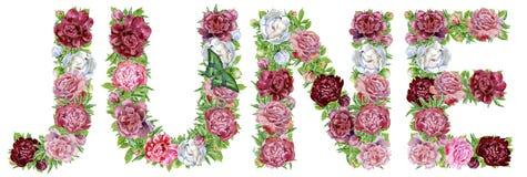 Word JUNI van waterverfbloemen vector illustratie
