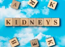 The word kidneys. On the sky background Stock Image