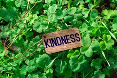 The word kindness wooden tag royalty free stock photos
