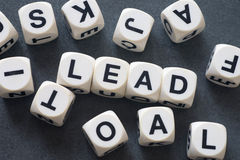 Word lead on toy cubes Stock Photos