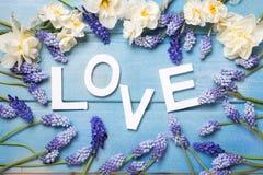 Word liefde en blauwe en witte bloemen op blauwe houten achtergrond Royalty-vrije Stock Afbeelding