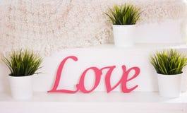 Word liefde in houten, roze gekleurd, met groene installaties wordt gemaakt die Stock Fotografie