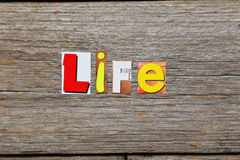 The word Life Royalty Free Stock Photography