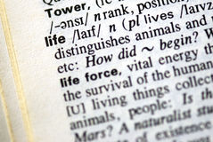 The word life in a dictionary. Close-up of the word life in a dictionary royalty free stock image