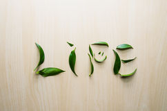Word Life emotion smile made with leaves of ruscus flower at wooden rustic wall background. Still life, eco style, top. Word Life emotion smile made with leaves stock photo