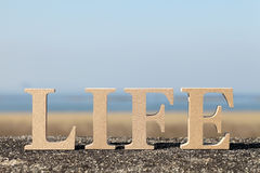 Word life made with wooden block Stock Image
